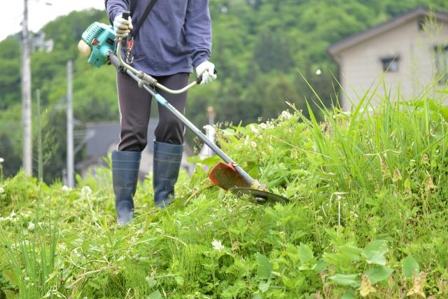 長崎市で草刈りに最適な年3回の時期~楽に草刈りを終えるコツまで徹底解説
